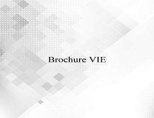 Brochure VIE